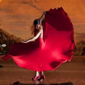 "Appleton Museum of Art Events - CF International Film Series: ""Flamenco, Flamenco"""