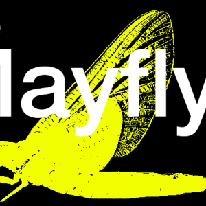 THE MAYFLYS